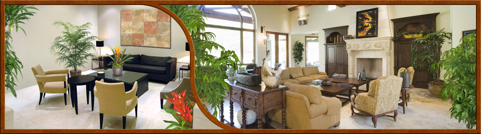 Tropical plant interior designs