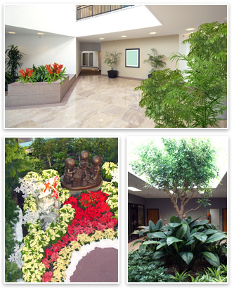 Commercial services interior tropical gardens interior tropical gardens plant rentals maintenance and sales examples workwithnaturefo